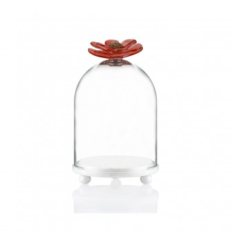 Chrysanthemum big marble bell jar